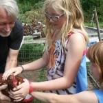 Mädchen mit Hühnern