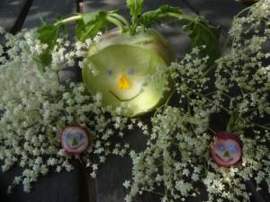 Ein Augenschmaus – Blumen haben Gesichter. Blüten leuchten wie Sterne