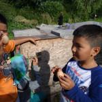 Eier für den Brennnessel Kaviar