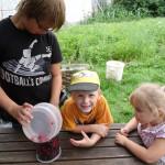 Marmelade kochen kinderleicht