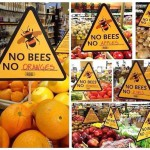 No Bees - No fruits