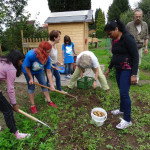Gärtnern als Integrationshilfe
