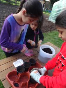 Kinder pflanzen ihre Zukunft