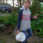 Finn sammelt Äpfel