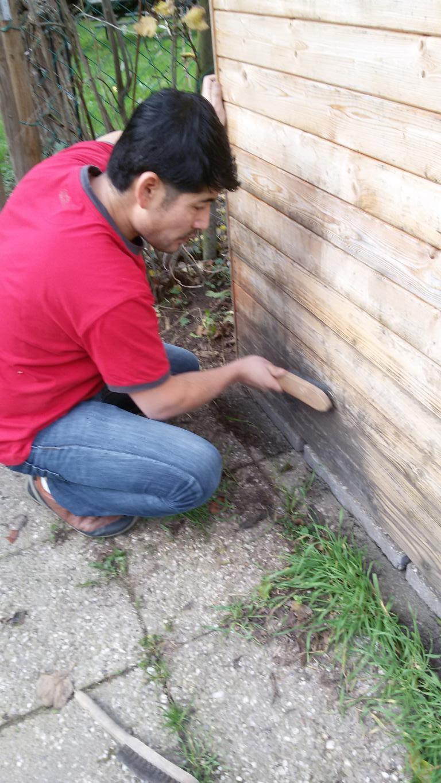 Holzschutz -  erst reinigen - dann streichen