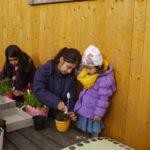Wir pflanzen Nachbarschaft 4