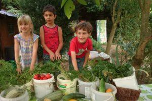 Erntezeit für Gartenkinder