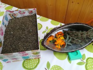 Seifenglück selber machen ganz ohne Konservierungsstoffe und chemische Zusätze mit Ölen und Düften von PRIMAVERA oder Kräuter und Blumen aus dem Tausendschön Garten. Veranstalter: Greenfairplanet
